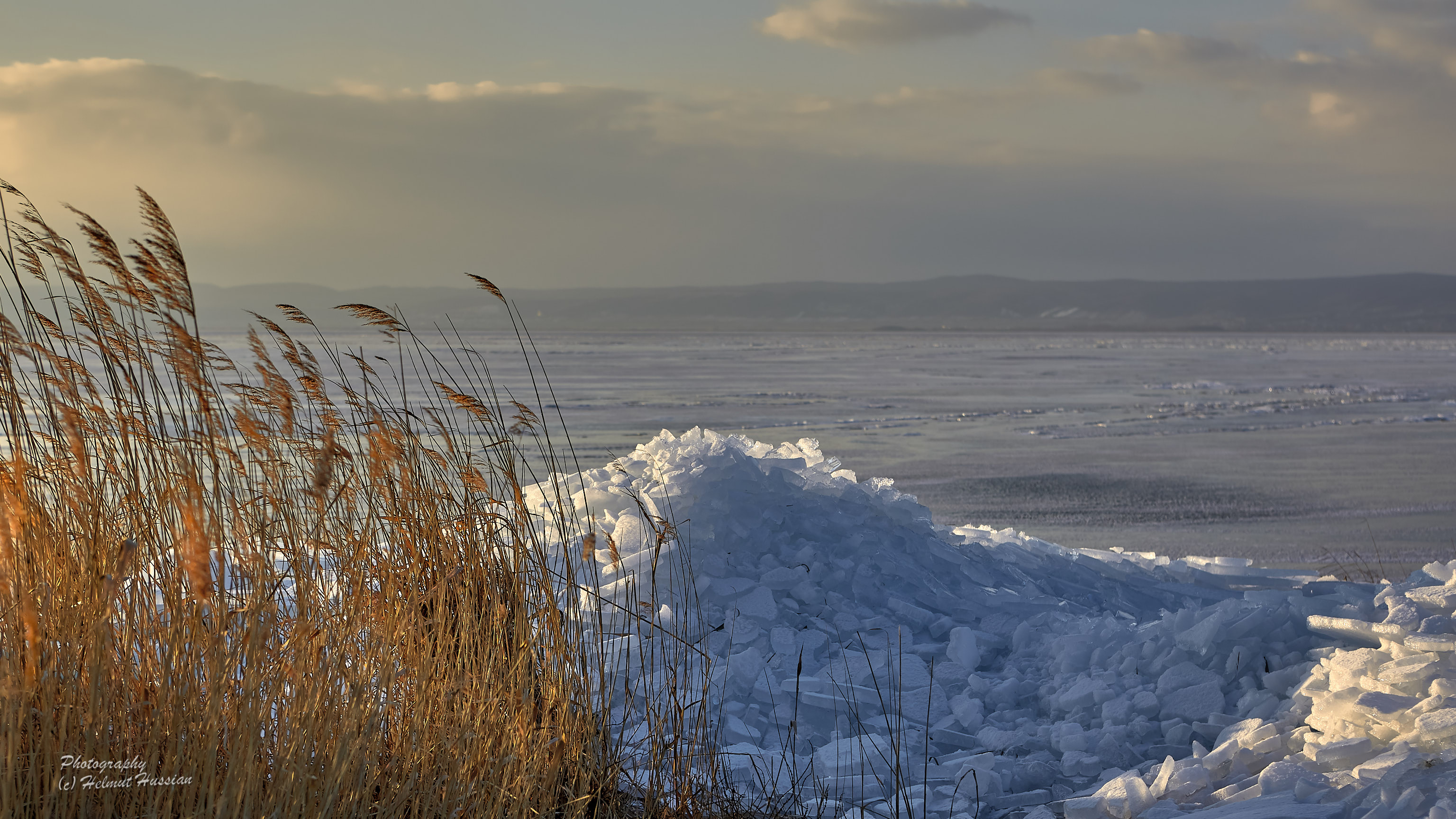 Winter evening at Lake Neusiedl in Austria
